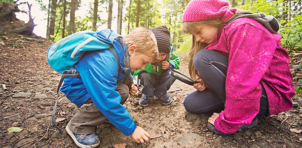 last child in the woods Journalist and child-advocacy expert richard louv used to love to roam in the  woods and climb trees when he was a boy but today's children have little or no.