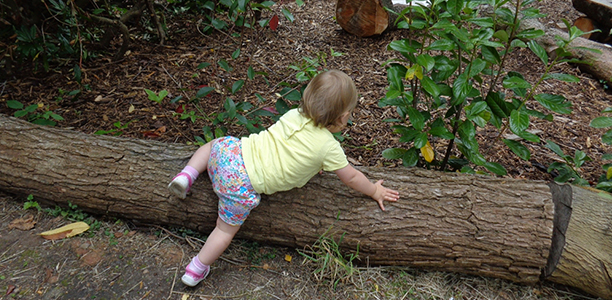 toddler climbs over log active for life