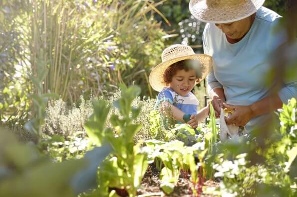 Why gardening is a great activity for kids