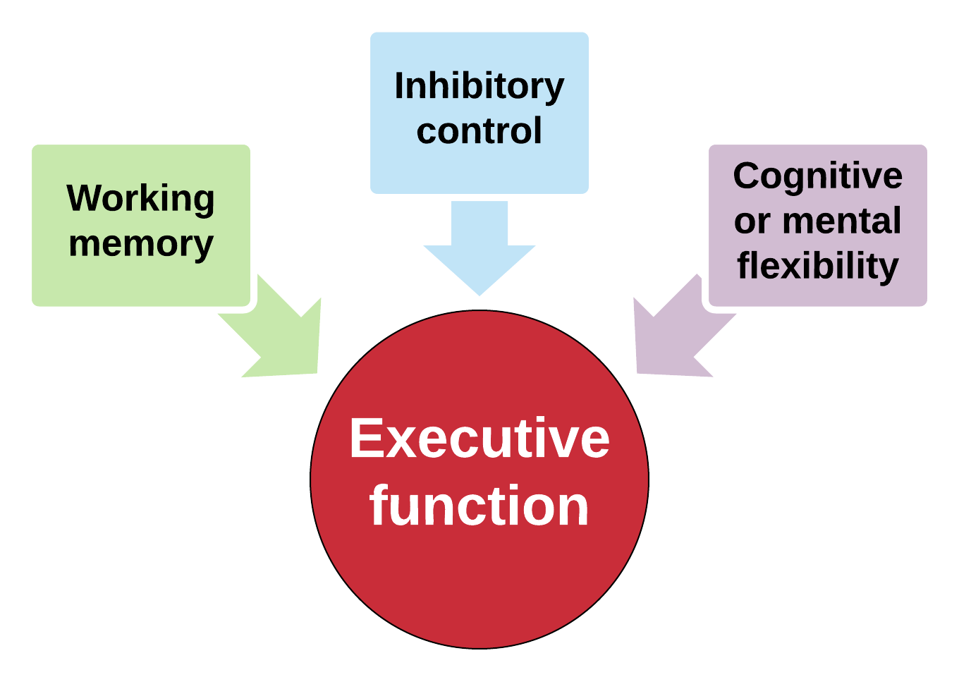 Strengthening Executive Function >> Executive Function Is The Key To Success In School Active
