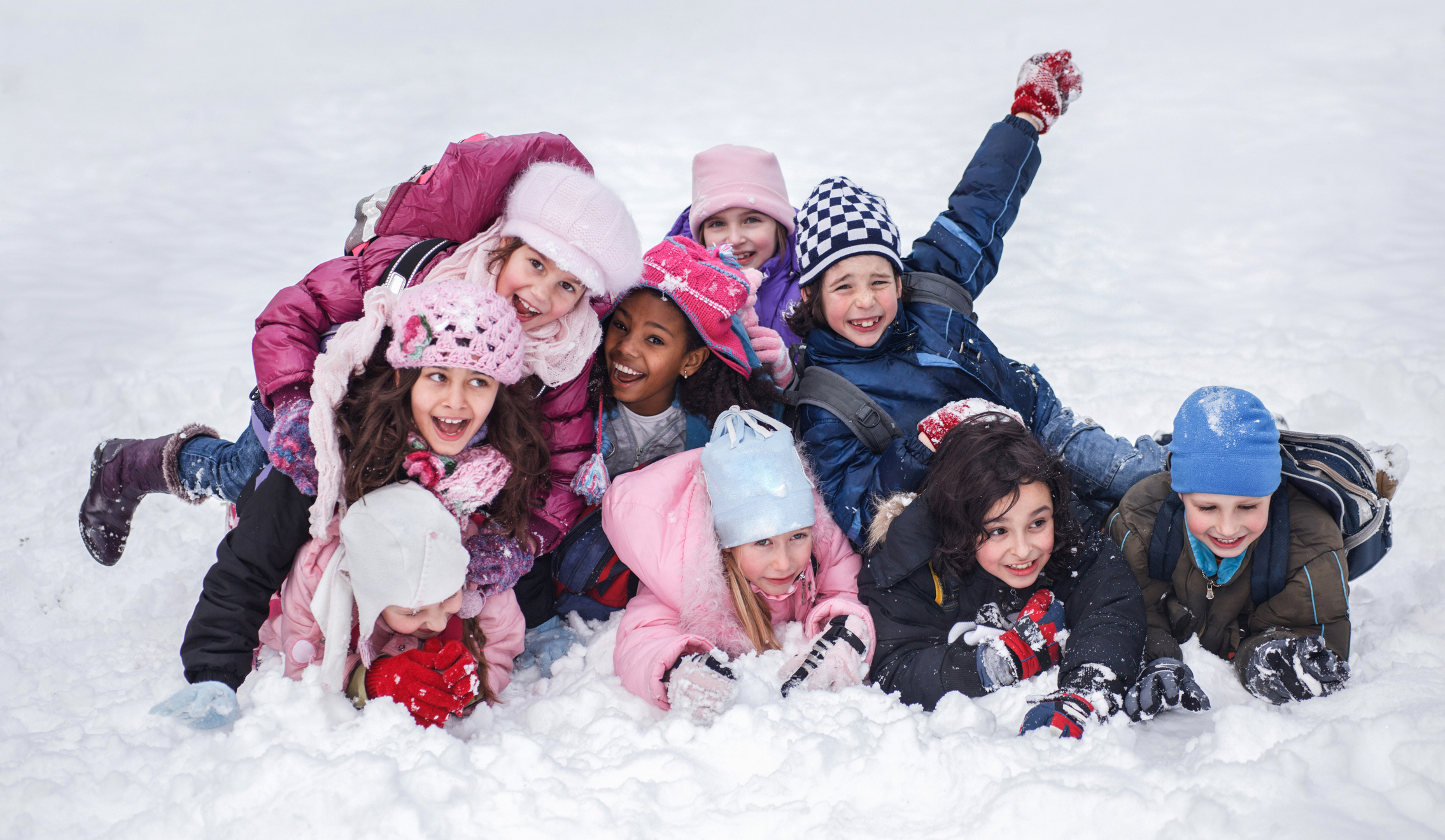 Start a Polar Bear Club at your child's school this winter
