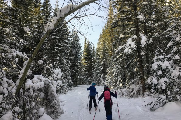 How to cross-country ski without a track