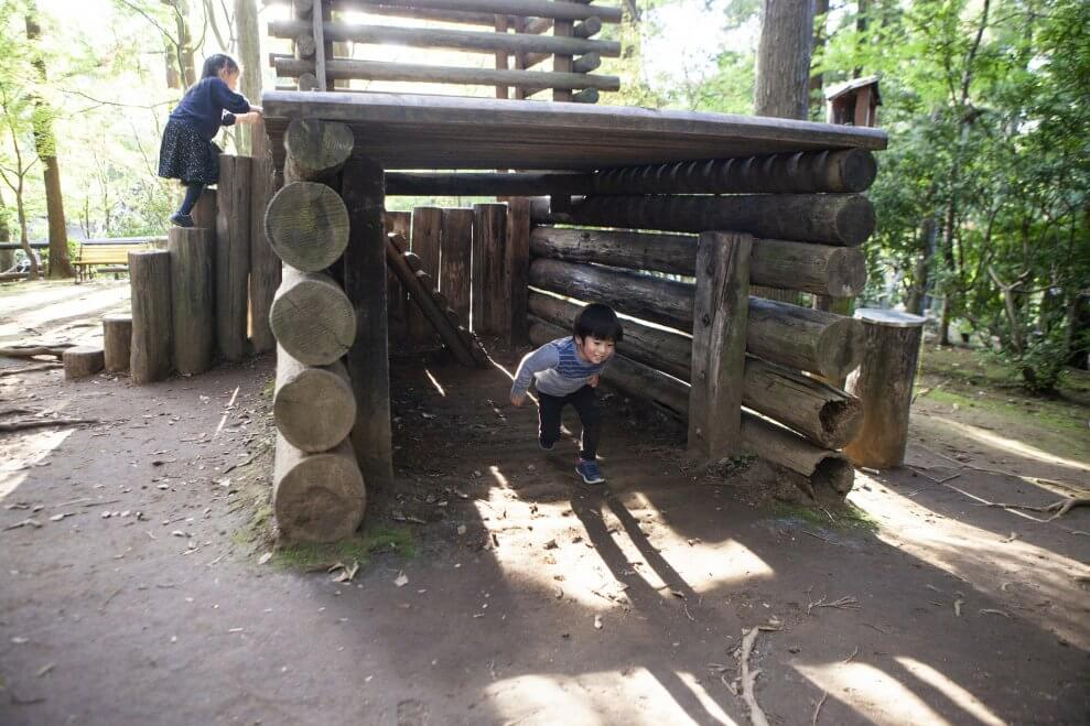 Inspire active, creative free play with natural playgrounds ...