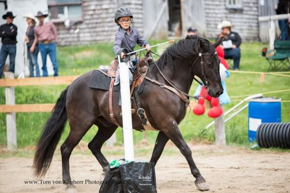 Four obscure (but awesome) equestrian sports